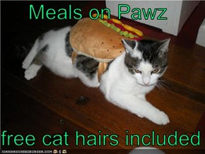 Meals on Pawz  free cat hairs included