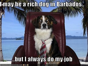 I may be a rich dog in Barbados..  ..but I always do my job