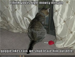 I think you is right mowsy minyun     goggie likes rain, we shud leave him out dere.