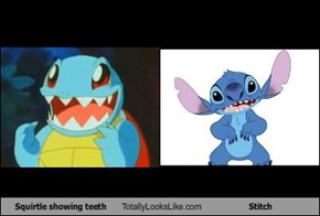 Squirtle showing teeth Totally Looks Like Stitch