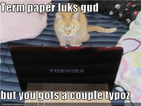 Term paper luks gud  but you gots a couple typoz