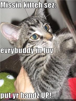 Missin kitteh sez: evrybuddy in luv put yr handz UP!