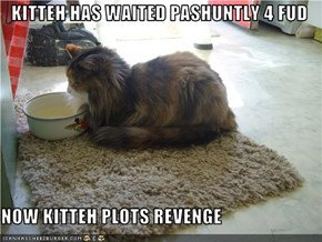 KITTEH HAS WAITED PASHUNTLY 4 FUD  NOW KITTEH PLOTS REVENGE