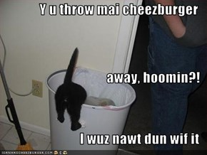 Y u throw mai cheezburger away, hoomin?! I wuz nawt dun wif it
