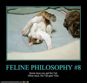 FELINE PHILOSOPHY #8
