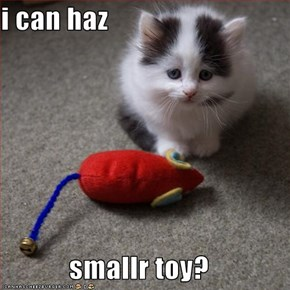 i can haz  smallr toy?