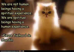 We are not human beings having a spiritual experience, We are spiritual beings having a human experience.  ~Pierre Tielhard de Chardin