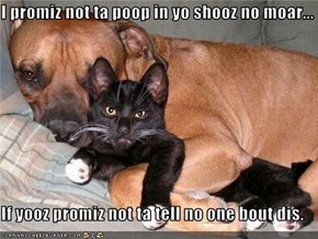 I promiz not ta poop in yo shooz no moar...  If yooz promiz not ta tell no one bout dis.