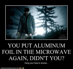 YOU PUT ALUMINUM FOIL IN THE MICROWAVE AGAIN, DIDN'T YOU?