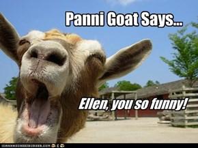 Panni Goat Says...