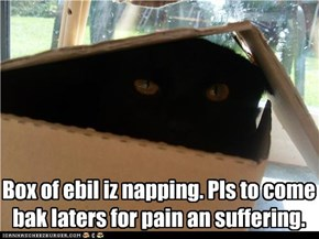 Box of ebil iz napping. Pls to come bak laters for pain an suffering.