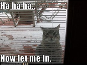 Ha ha ha..  Now let me in.
