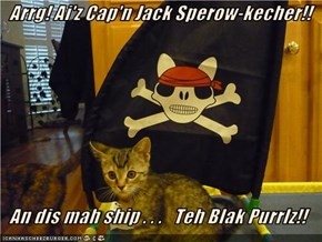 Arrg! Ai'z Cap'n Jack Sperow-kecher!!    An dis mah ship . . .   Teh Blak Purrlz!!