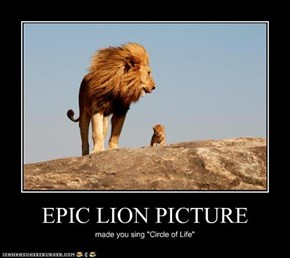EPIC LION PICTURE