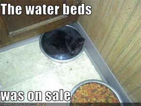 The water beds   was on sale