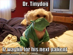 Dr. Tinydog  Iz waytin for his next patient