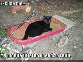 Excuse me...  My mobile litterbox needs a refill.