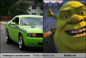 Challenger's rearview mirror Totally Looks Like Shrek's ear