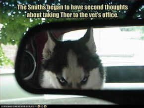The Smiths began to have second thoughts about taking Thor to the vet's office.
