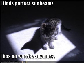 I finds purfect sunbeamz  I has no worriez anymore.