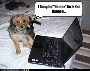 "I Googled ""Neuter"" An Iz Not Happeh..."