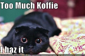 Too Much Koffie  I haz it