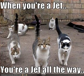 When you're a Jet..  You're a Jet all the way...