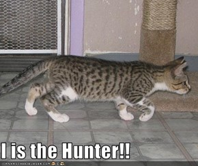 I is the Hunter!!
