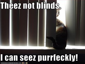 Theez not blinds.  I can seez purrfeckly!