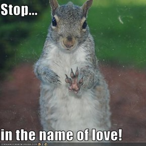 Stop...  in the name of love!