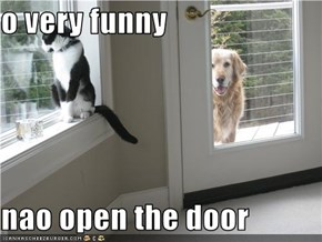 o very funny  nao open the door