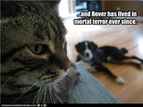 ...and Rover has lived in mortal terror ever since.