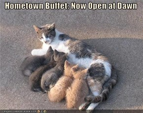 Hometown Buffet: Now Open at Dawn