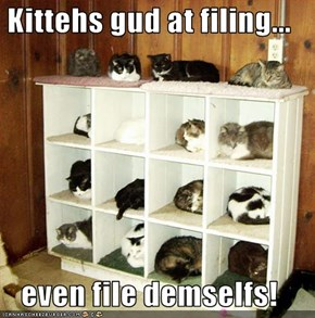 Kittehs gud at filing...  even file demselfs!