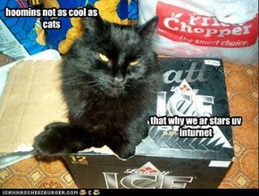 hoomins not as cool as cats