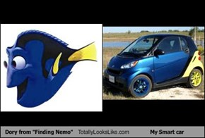 "Dory from ""Finding Nemo"" Totally Looks Like My Smart car"