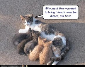 Billy, next time you want to bring friends home for dinner, ask first.