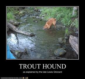 TROUT HOUND
