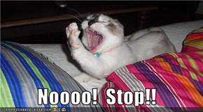 Noooo!  Stop!!