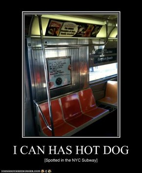 I CAN HAS HOT DOG