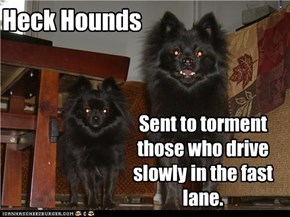 Heck Hounds