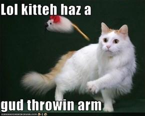 Lol kitteh haz a  gud throwin arm