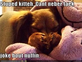 Stuped kitteh. Cant neber taek  joke bout nuffin.