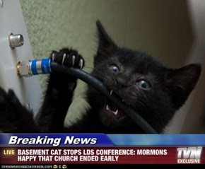 Breaking News - BASEMENT CAT STOPS LDS CONFERENCE: MORMONS HAPPY THAT CHURCH ENDED EARLY