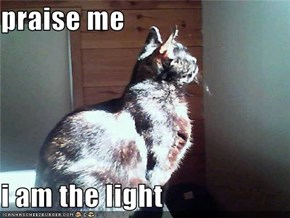 praise me  i am the light