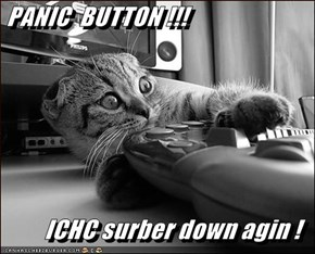 PANIC  BUTTON !!!   ICHC surber down agin !