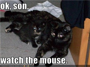ok, son.   watch the mouse.
