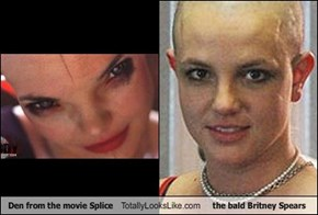 Den from the movie Splice Totally Looks Like the bald Britney Spears