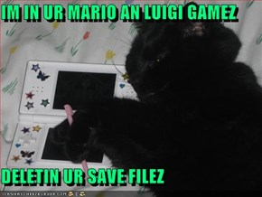 IM IN UR MARIO AN LUIGI GAMEZ   DELETIN UR SAVE FILEZ