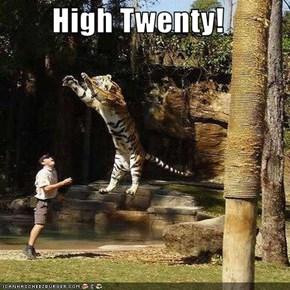 High Twenty!